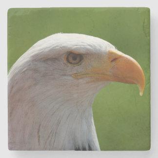 Retrato del águila calva posavasos de piedra