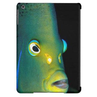 Retrato del Angelfish del semicírculo, bahía de Carcasa Para iPad Air