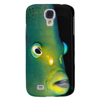 Retrato del Angelfish del semicírculo, bahía de Funda Para Galaxy S4