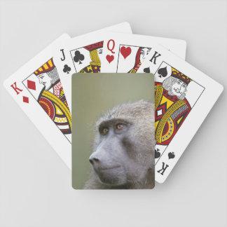 Retrato del babuino verde oliva adulto (anubis del naipes