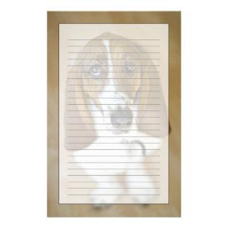 Retrato del Bassett Washington Papeleria