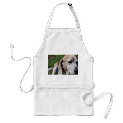 retrato del beagle delantal