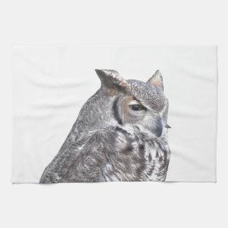 Retrato del búho aislado en el fondo blanco toallas de cocina