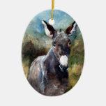 Retrato del burro ornato