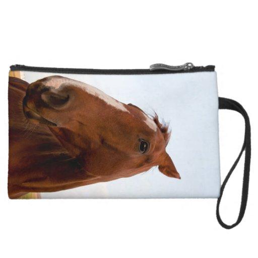 Retrato del caballo