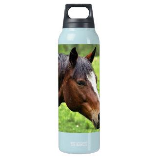 Retrato del caballo de Brown Cantimplora