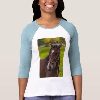 Retrato del caballo de Brown Camisetas