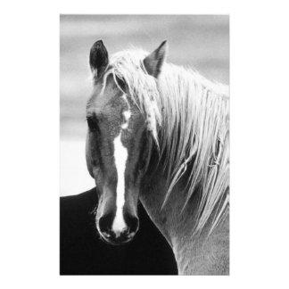 Retrato del caballo de BW Papeleria Personalizada