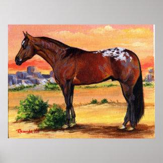 Retrato del caballo del perfil del Appaloosa Póster