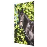 retrato del caballo marrón 2 impresión en lona estirada