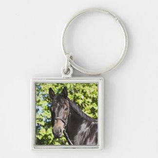 retrato del caballo marrón 2 llaveros