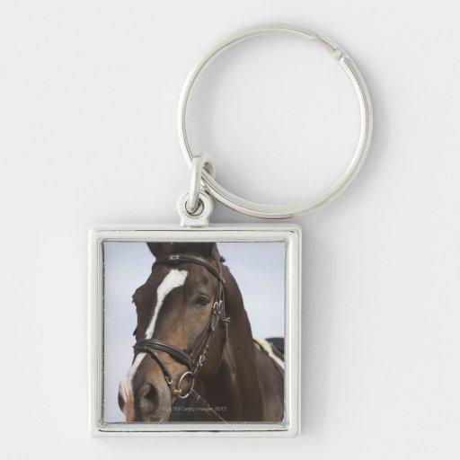 retrato del caballo marrón llavero cuadrado plateado