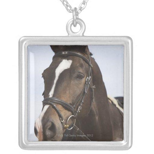 retrato del caballo marrón pendiente