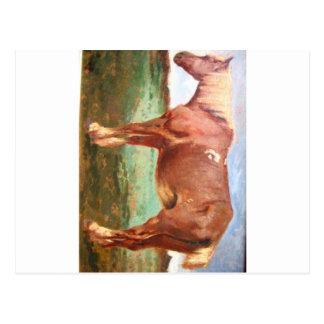 Retrato del caballo por Troyon constante Tarjeta Postal