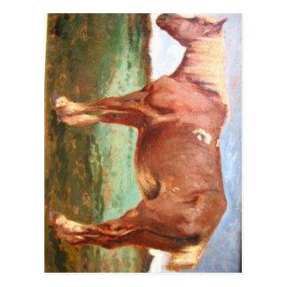 Retrato del caballo por Troyon constante Tarjetas Postales