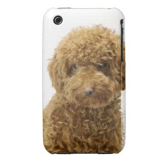 Retrato del caniche de juguete Case-Mate iPhone 3 protectores