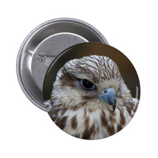 Retrato del cherrug de Falco Pin Redondo De 2 Pulgadas