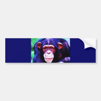 Retrato del chimpancé pegatina de parachoque