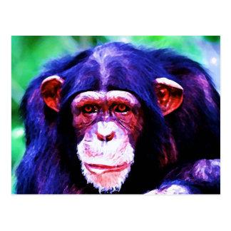 Retrato del chimpancé postal
