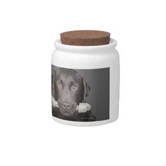 Retrato del chocolate Labrador Jarra Para Caramelo