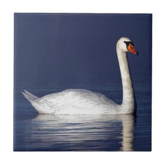 Retrato del cisne azulejo cuadrado pequeño