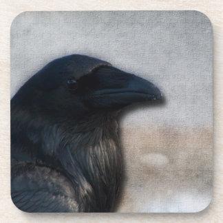 Retrato del cuervo posavasos de bebidas