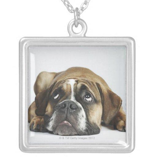 Retrato del dogo viejo de Dorset Tyme Colgante Cuadrado