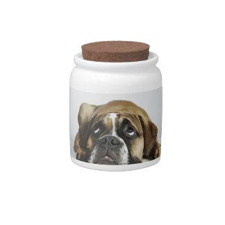Retrato del dogo viejo de Dorset Tyme Platos Para Caramelos