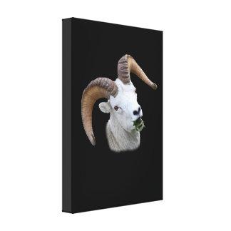 Retrato del espolón impresión en lona estirada