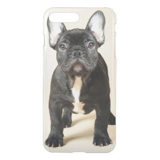Retrato del estudio de la situación del perrito fundas para iPhone 7 plus