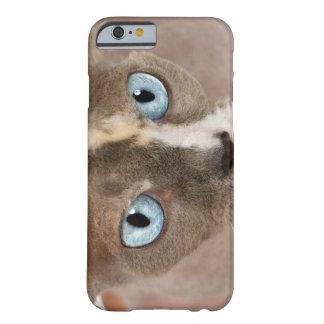 Retrato del estudio del gato de Sphynx Funda Para iPhone 6 Barely There