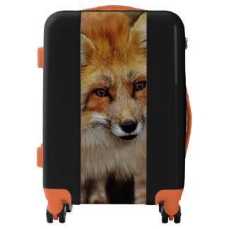 Retrato del Fox Maletas