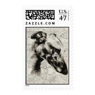 Retrato del galgo en el vintage floral sello