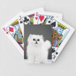 Retrato del gatito baraja cartas de poker