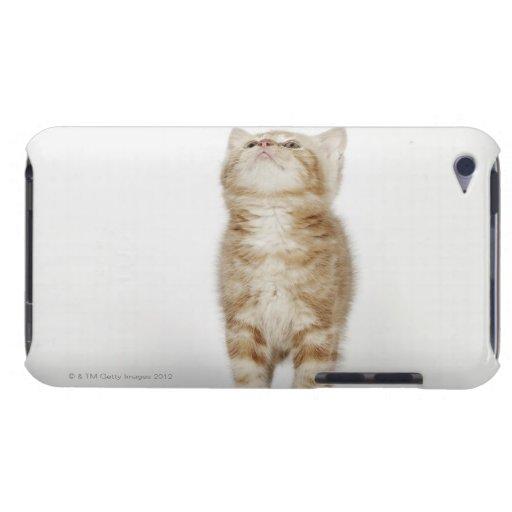Retrato del gatito que mira para arriba iPod touch Case-Mate protector