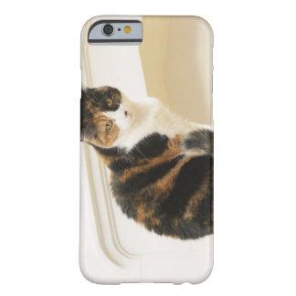 Retrato del gato 2 funda de iPhone 6 barely there