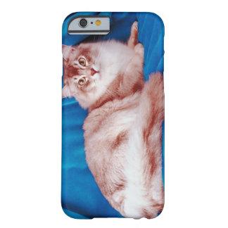 Retrato del gato 3 funda para iPhone 6 barely there