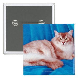 Retrato del gato 3 pin cuadrada 5 cm