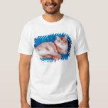 Retrato del gato 3 remera