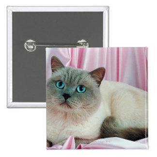 Retrato del gato 4 pin cuadrada 5 cm