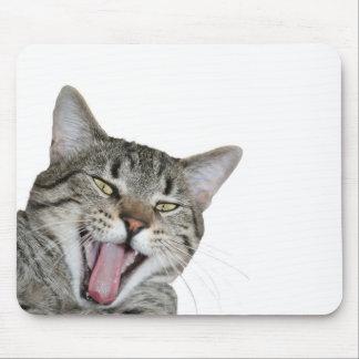 Retrato del gato alfombrillas de ratones