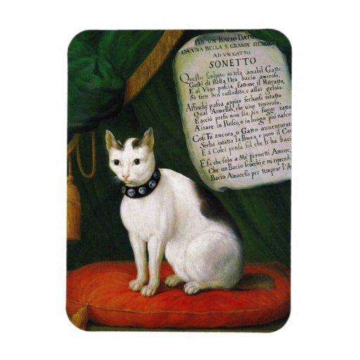 Retrato del gato Armellino Imán Rectangular