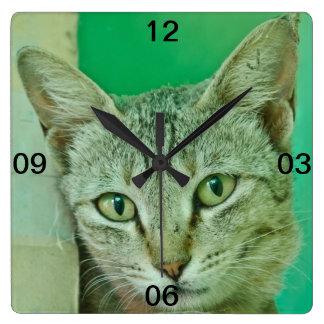 Retrato del gato de Bengala Reloj De Pared