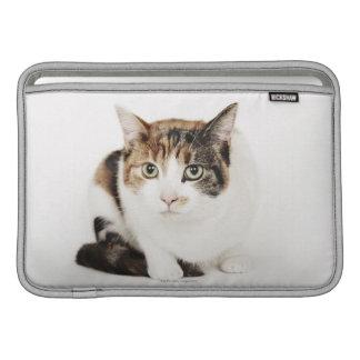 Retrato del gato de calicó fundas macbook air