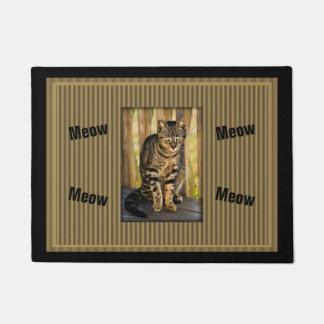 Retrato del gato de la concha, foto del animal del felpudo