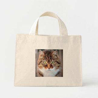 Retrato del gato de la Isla de Man de ojos verdes Bolsa De Tela Pequeña