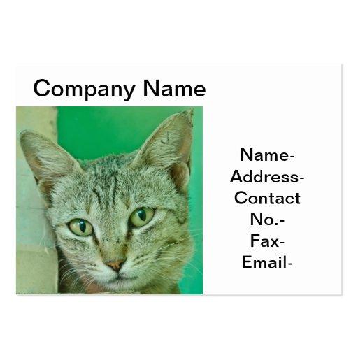 Retrato del gato/del mascota tarjeta personal