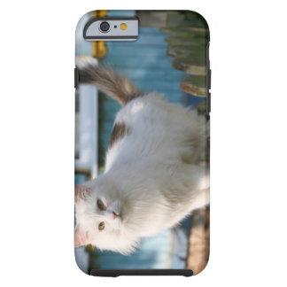 Retrato del gato en la cerca funda de iPhone 6 tough