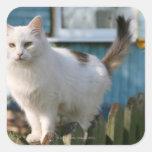 Retrato del gato en la cerca colcomanias cuadradass