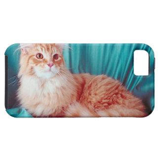 Retrato del gato iPhone 5 Case-Mate carcasa
